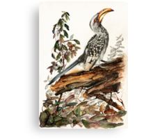 Master Of All He Surveys Canvas Print