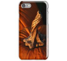 Twisted iPhone Case/Skin