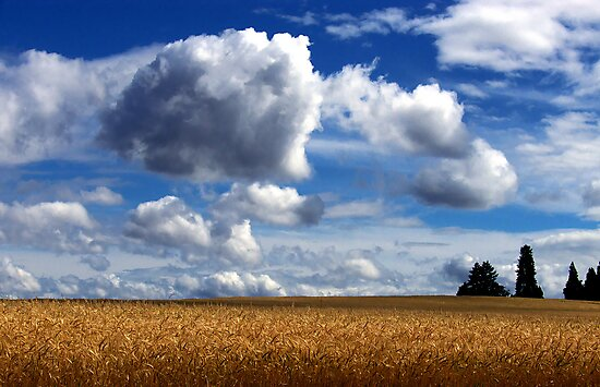 Big Sky by Charles & Patricia   Harkins ~ Picture Oregon