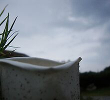a broken cup in the rain ! by kunalchelani