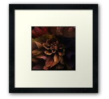 Dark Flower Framed Print