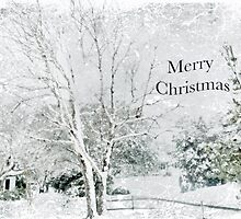 """Snow Fantasy """"Merry Christmas"""" ~ Greeting Card Plus More! by Susan Werby"""