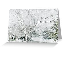 "Snow Fantasy ""Merry Christmas"" ~ Greeting Card Plus More! Greeting Card"