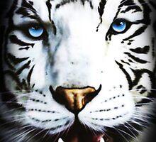 White Tiger by IJCT