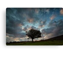 A Tree For Christmas Canvas Print
