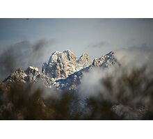 Through the Sage Photographic Print