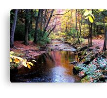 October Stroll Canvas Print