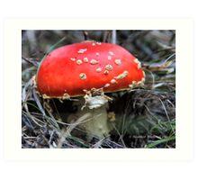 Mario Kart Mushroom Art Print
