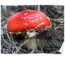 Mario Kart Mushroom Poster