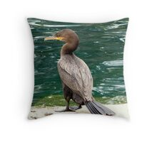 Neotropic Cormorant Throw Pillow