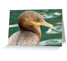 Neotropic Cormorant Greeting Card