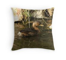 Pied-billed Grebe ~ Nonbreeding Adult Throw Pillow