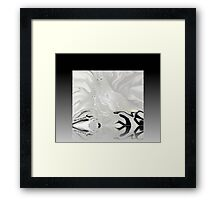 THREE DOVES OF PEACE.... DEDICATED TO SEPT 11tH 2001 Framed Print
