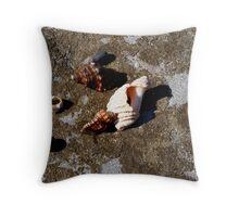 Rock Pool Treasures - Yamba - NSW Throw Pillow