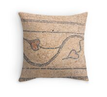 Israel, Bet Shean (Scythopolis). Mosaic Throw Pillow