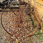Farm Hay Rake by dge357