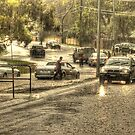 Flash Flood by Robert  Welsh