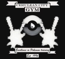 Cerulean city gym by Genus Bombus