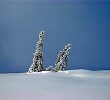 Winter Romance by bilyana