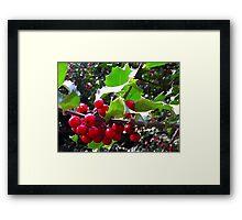 """""""Christmas 2011"""" Framed Print"""