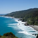 West Coast - South Island - New Zealand by Paul Davis