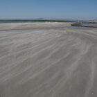 Windswept Beach by Chris Fick