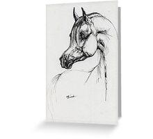 Arabian horse drawing Greeting Card