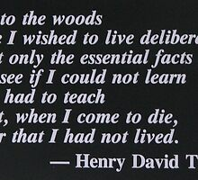 I Went To Live In The Woods...... by NatureGreeting Cards ©ccwri