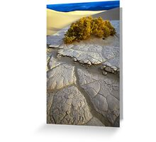 Death Valley Mudflat Greeting Card