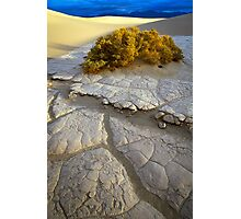 Death Valley Mudflat Photographic Print