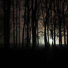 Nacht Bild ( night picture) by pdsfotoart