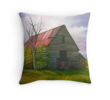 Red Roofed Barn in Georgia, Hwy 53 Throw Pillow