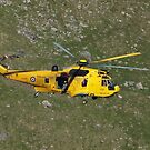 Sea King by Simon Evans