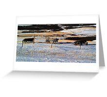 Waterton's Old wagons  Greeting Card