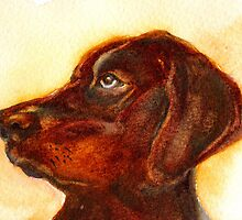 Innocence The Dog by Marsha Woods