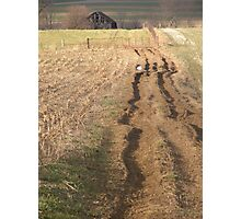 The Rutted Road Photographic Print