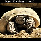 Desert Dwellers ~ Vol 2 by Kimberly Chadwick