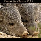 Desert Dwellers ~ Vol 1 by Kimberly P-Chadwick