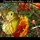 Desert Butterflies ~ Vol 2 by Kimberly Chadwick