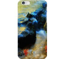 Willow River Falls iPhone Case/Skin