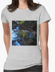Willow River Falls 2 Womens Fitted T-Shirt