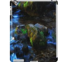 Willow River Falls 2 iPad Case/Skin