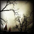 Witches by tbartoshyk