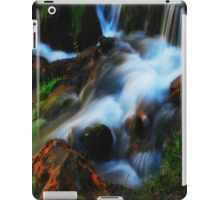 Willow River Falls 3 iPad Case/Skin