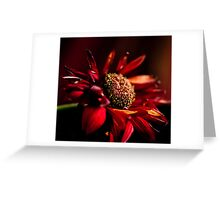 Dying Wish Greeting Card