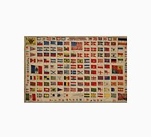 Historical Flags of The World (1869) Unisex T-Shirt