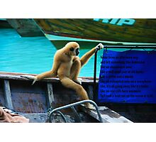 monkey in a boat Photographic Print