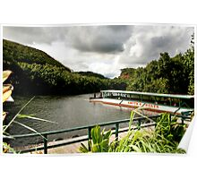 Fern Grotto River Poster