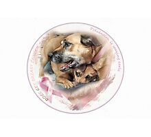 Breast Cancer Awareness-( In Dogs ) Photographic Print
