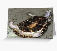 Doing the backstroke... Greeting Card
